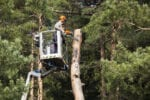 Complete Tree Service